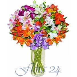 Доставка цветов украина хмельницкий купить оптом тюльпаны в санкт-петербурге